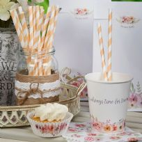 Peach Striped Paper Straws (25)